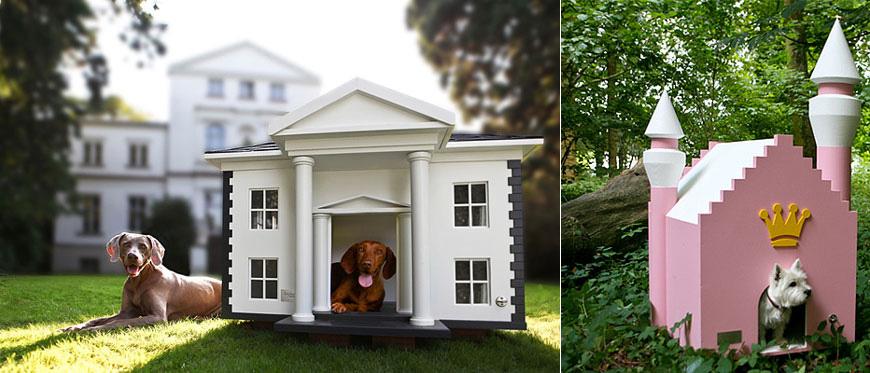 Дизайн на кучешки къщи и зони за кучета у дома