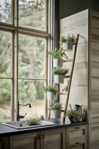 3 интериорни съвета за разполагането на цветята у дома през зимата